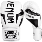 best boxing gloves