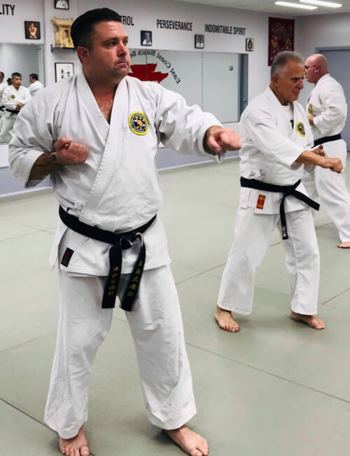 taekwondo vs karate - what are the differences?