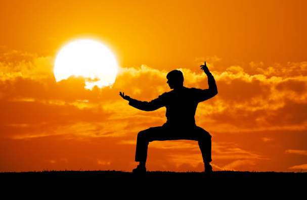 Kung Fu has a Philosophical Approach unlike MMA, Which focuses on the fighting aspect
